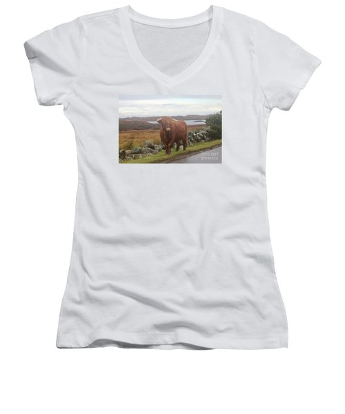 Highland Cow Women's V-Neck (Athletic Fit)