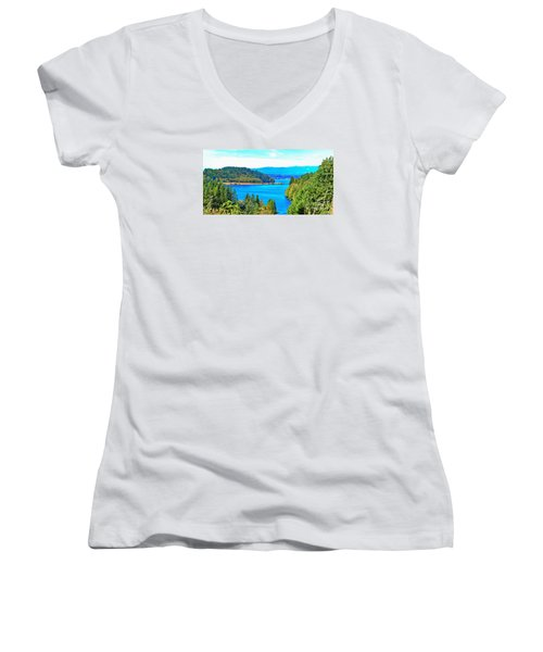 Lake Mayfield Women's V-Neck T-Shirt (Junior Cut) by Ansel Price