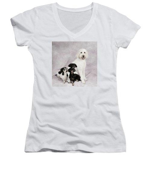 Fur Friends Women's V-Neck T-Shirt (Junior Cut) by Erika Weber