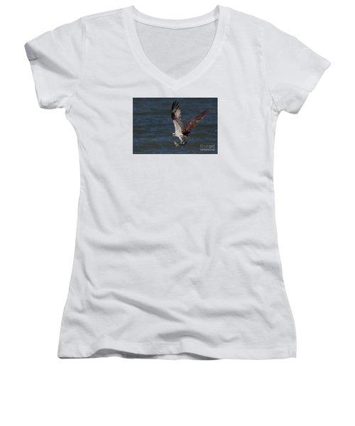 Osprey In Flight Women's V-Neck T-Shirt (Junior Cut) by Meg Rousher