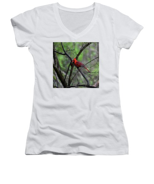 Women's V-Neck T-Shirt (Junior Cut) featuring the photograph Saint Louis by Skip Willits