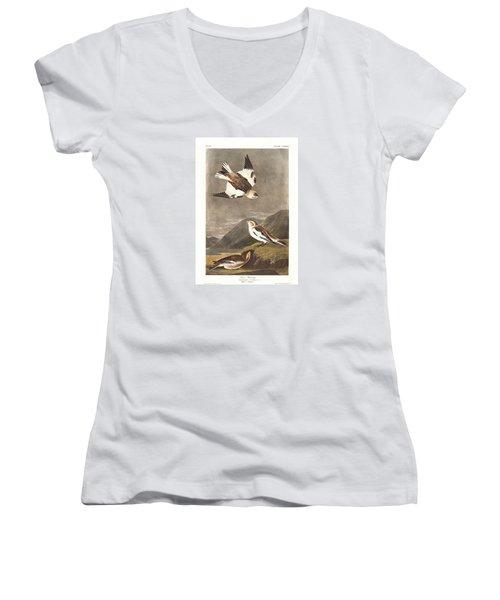 Snow Bunting Women's V-Neck T-Shirt (Junior Cut) by Rob Dreyer