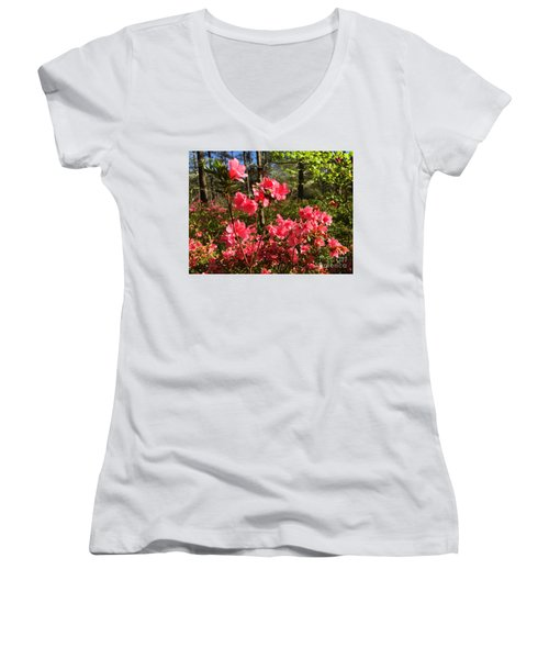 Spring Is In The Air Women's V-Neck