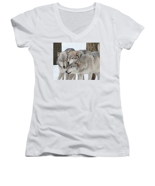 Three Wolves Are A Crowd Women's V-Neck T-Shirt