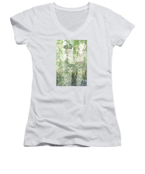 Through The Willows Women's V-Neck T-Shirt