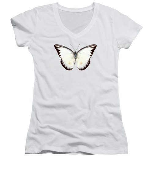 White Butterfly Species Appias Lyncida Women's V-Neck (Athletic Fit)