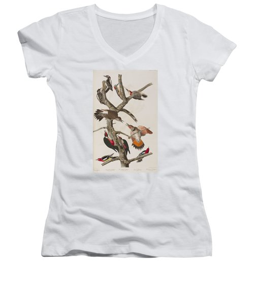 Woodpeckers Women's V-Neck (Athletic Fit)