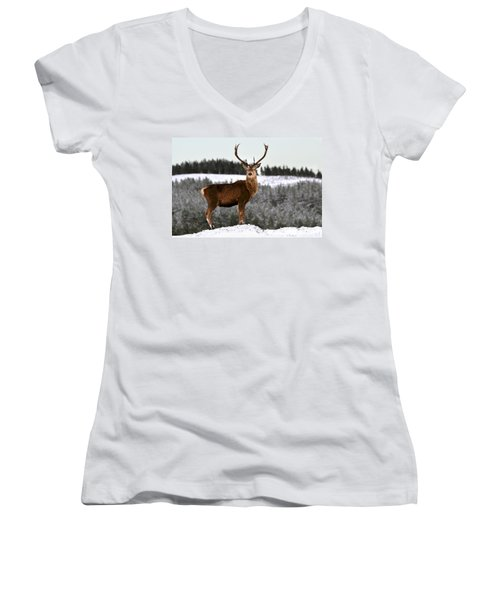 Red Deer Stag Women's V-Neck