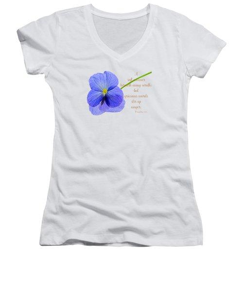 A Soft Answer Women's V-Neck T-Shirt