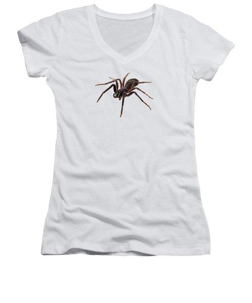 Black Spider Species Tegenaria Sp Women's V-Neck (Athletic Fit)