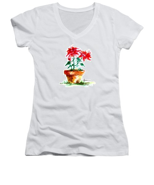 Cracked Pot  Women's V-Neck