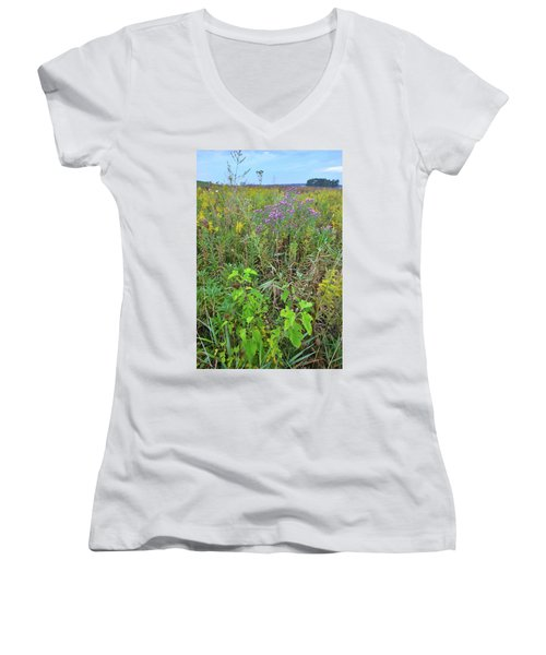 Glacial Park Native Prairie Women's V-Neck