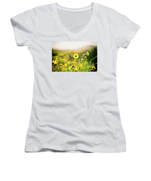 Nature's Smile Series Women's V-Neck T-Shirt (Junior Cut) by Joseph S Giacalone