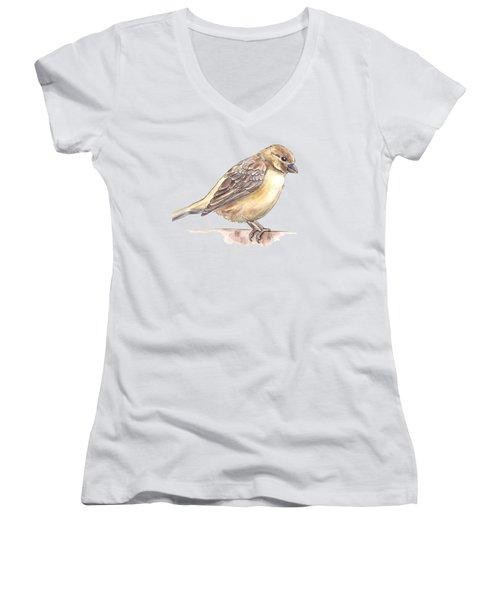 Sparrow Women's V-Neck T-Shirt (Junior Cut) by Katerina Kirilova
