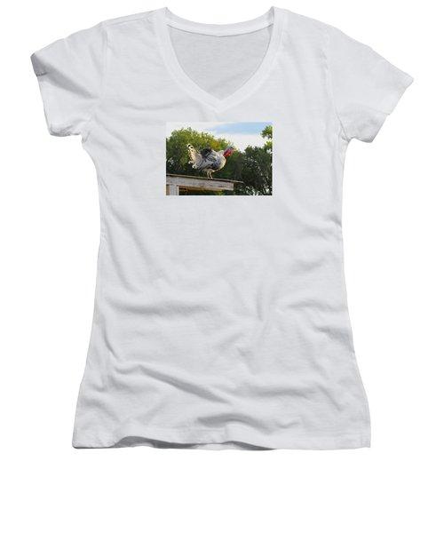 Women's V-Neck T-Shirt (Junior Cut) featuring the photograph Gobble Gobble by Brenda Pressnall