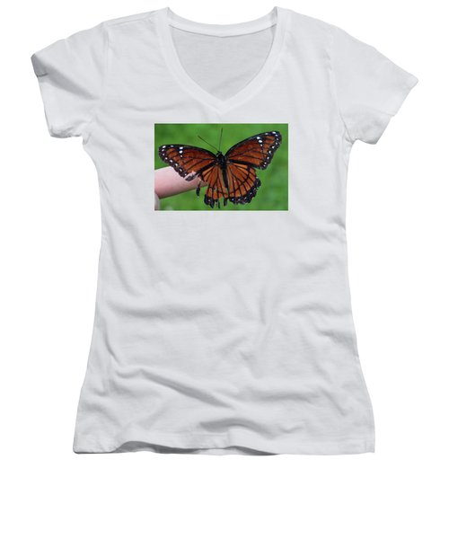 Viceroy Butterfly Women's V-Neck