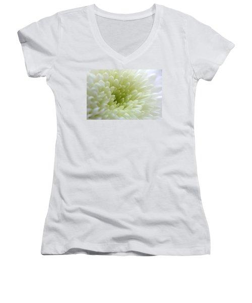 White Chrysanthemum Women's V-Neck T-Shirt