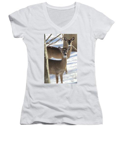 White Tailed Deer Smithtown New York Women's V-Neck T-Shirt (Junior Cut) by Bob Savage