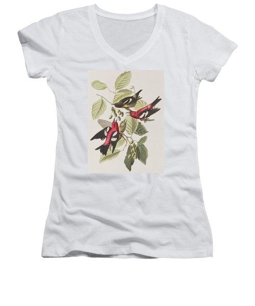 White-winged Crossbill Women's V-Neck T-Shirt (Junior Cut) by John James Audubon