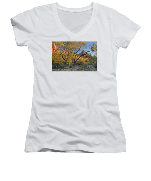 Zion National Park Women's V-Neck (Athletic Fit)