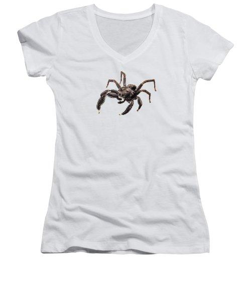 Black Spider Women's V-Neck (Athletic Fit)
