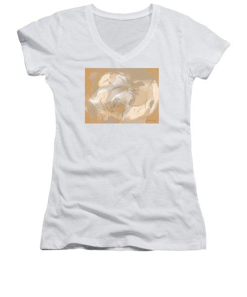 3 Horses Women's V-Neck T-Shirt