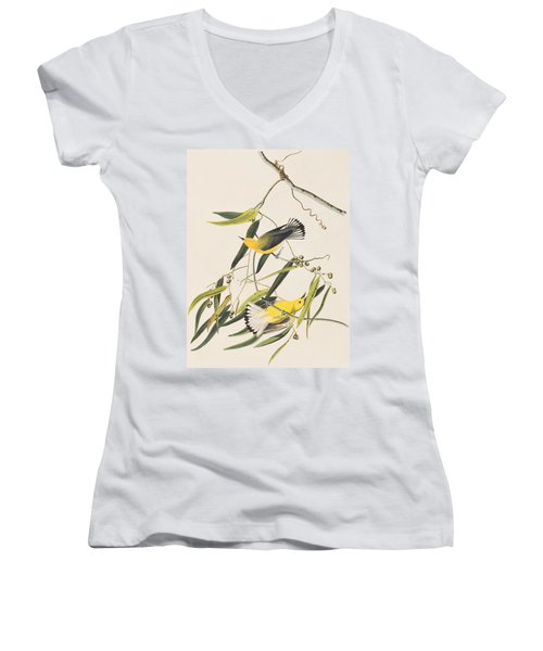 Prothonotary Warbler Women's V-Neck T-Shirt