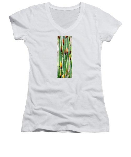 Women's V-Neck T-Shirt (Junior Cut) featuring the photograph Bamboo Grass by Werner Lehmann