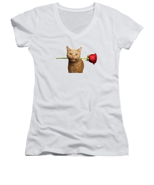 Portrait Of Ginger Cat Brought Rose As A Gift Women's V-Neck (Athletic Fit)