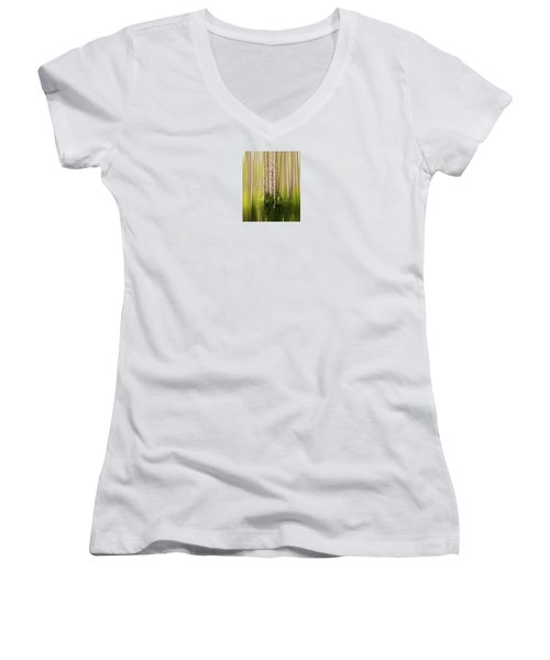 4012 Women's V-Neck T-Shirt