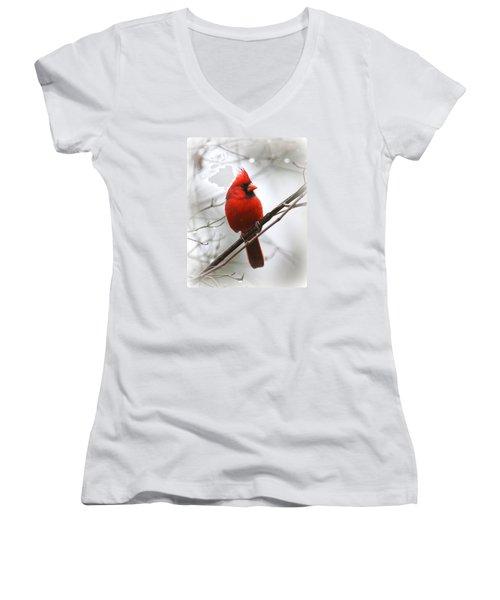 4772-001 - Northern Cardinal Women's V-Neck T-Shirt (Junior Cut) by Travis Truelove