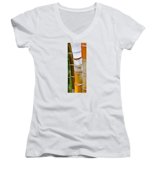 Bamboo Palm Women's V-Neck T-Shirt (Junior Cut) by Werner Lehmann