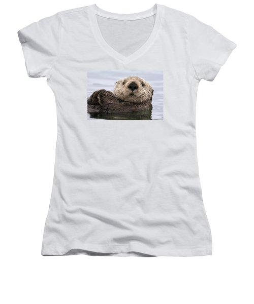 Sea Otter Elkhorn Slough Monterey Bay Women's V-Neck T-Shirt (Junior Cut) by Sebastian Kennerknecht