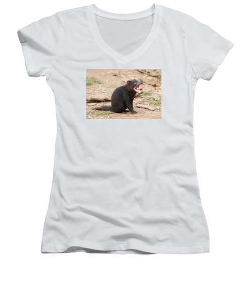 Tasmanian Devil Women's V-Neck (Athletic Fit)