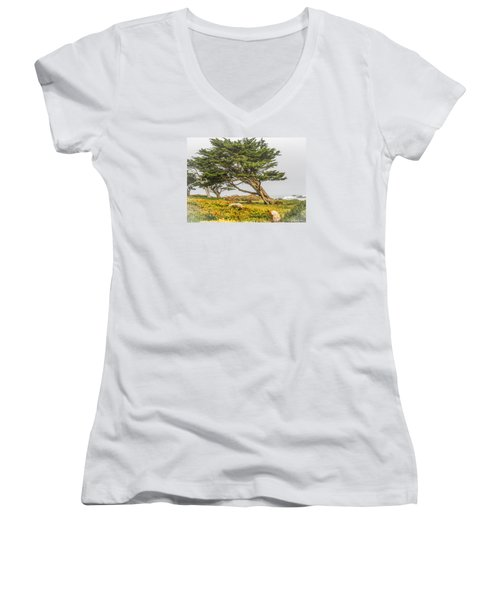 #7803 - Monterey, California Women's V-Neck T-Shirt