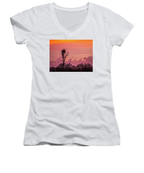A Birdie Morning Women's V-Neck T-Shirt