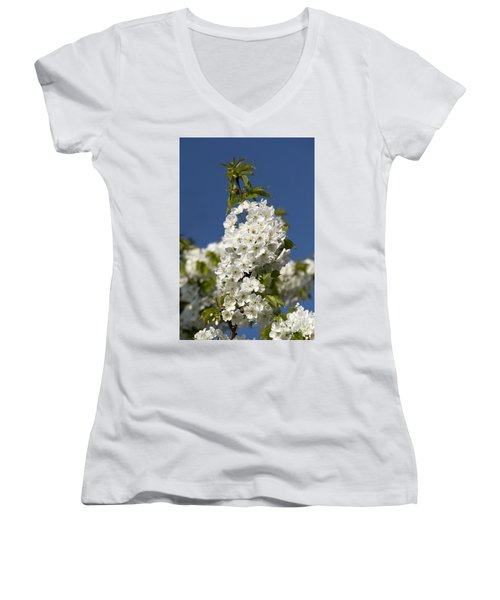 A Cluster Of Cherry Flowers Blossoming In The Springtime Women's V-Neck