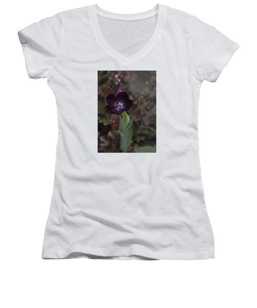 A Dark Richness Women's V-Neck T-Shirt (Junior Cut) by Morris  McClung