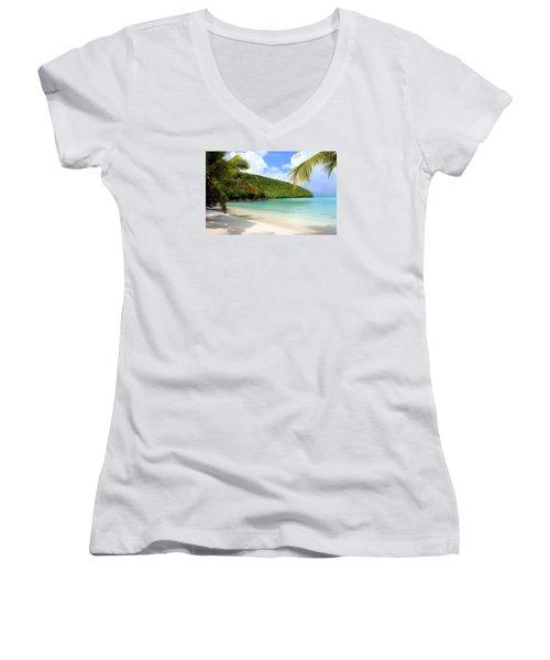 A Day With My Best Friend Women's V-Neck T-Shirt (Junior Cut) by Fiona Kennard