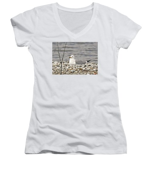 A Few Moments Of Peace Women's V-Neck