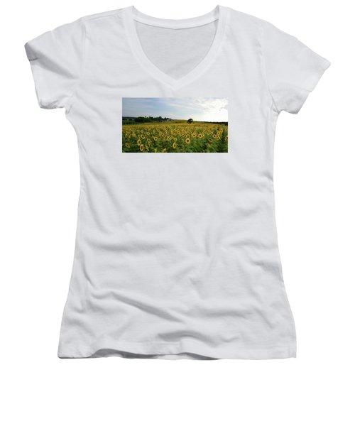 A Field Of Sunflowers Women's V-Neck T-Shirt (Junior Cut) by Janice Adomeit