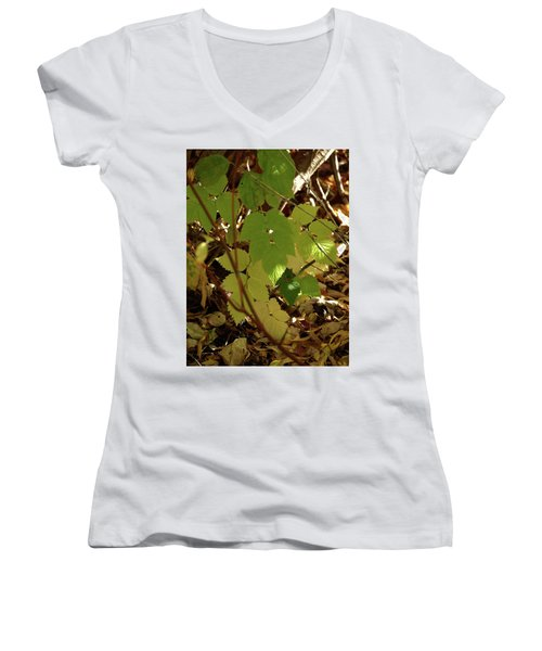 Women's V-Neck T-Shirt (Junior Cut) featuring the photograph A Plant's Various Colors Of Fall by DeeLon Merritt