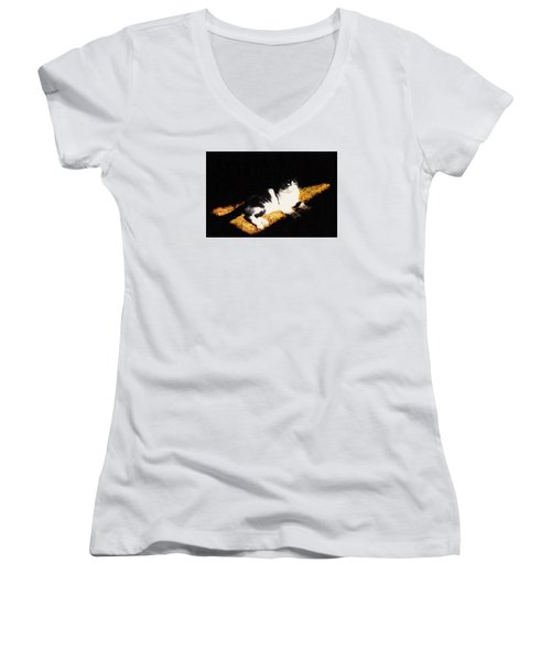 A Place In The Sun Women's V-Neck T-Shirt (Junior Cut)