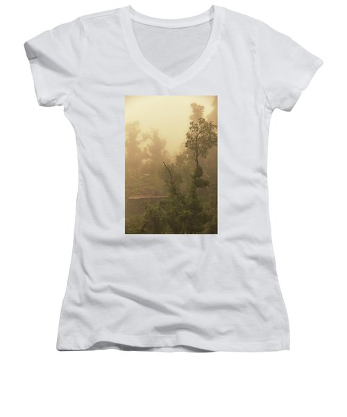 Abandoned Shed Women's V-Neck T-Shirt (Junior Cut) by Rajiv Chopra