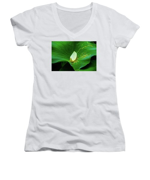 Abstract Leaves Of Green And Yellow Women's V-Neck