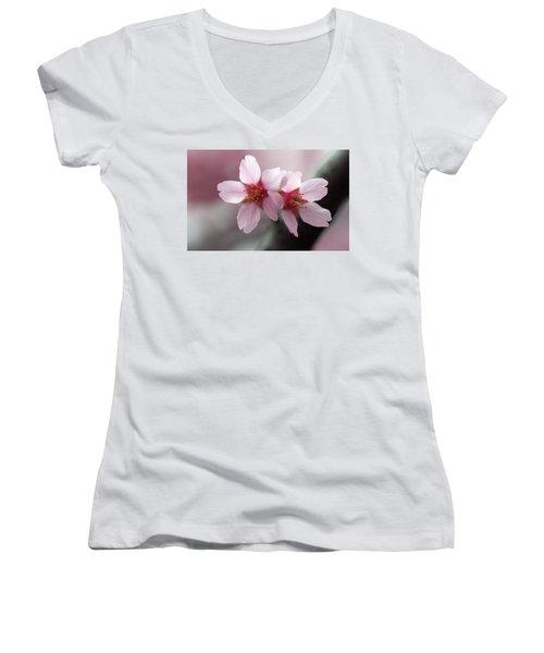 Affection Women's V-Neck T-Shirt (Junior Cut) by Joseph Skompski