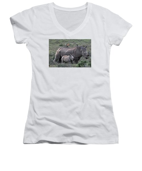 African White Rhino And Calf Women's V-Neck (Athletic Fit)