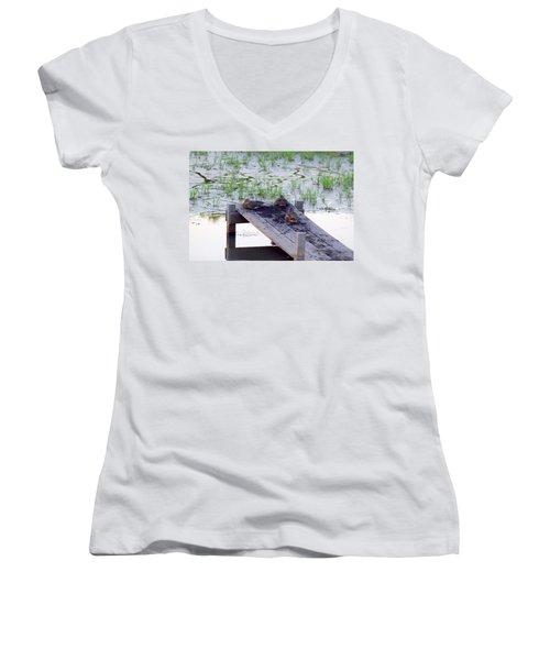 Afternoon Rest Women's V-Neck T-Shirt