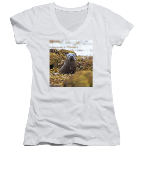 Alert Female Otter Women's V-Neck