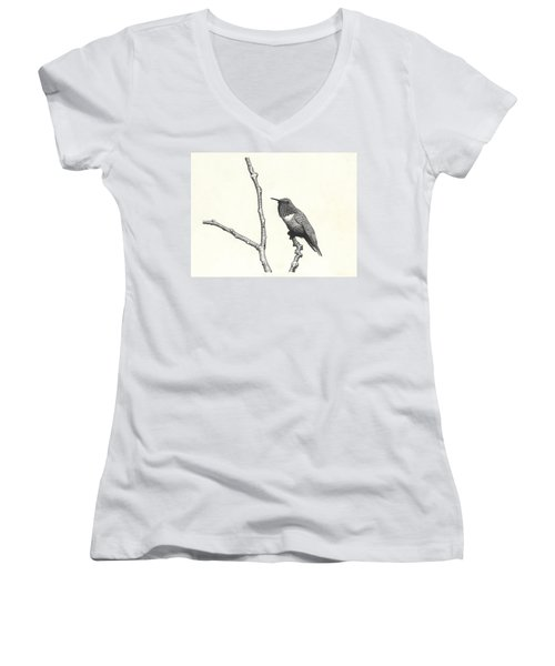 Allen's Hummingbird Women's V-Neck (Athletic Fit)